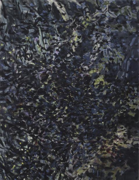 13.Nachtgarten